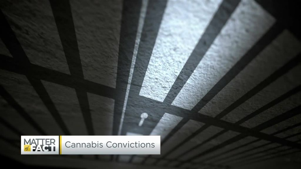 The politics of pot are changing with Illinois predicted to expunge an estimated 800,000 marijuana convictions
