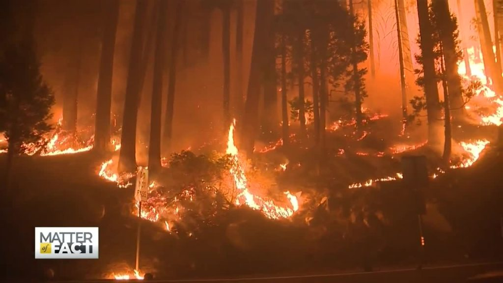 Thousands Fled California's Caldor Fire. They Lived; But Their Homes Are Gone.
